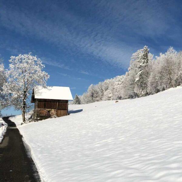 Impression Winter